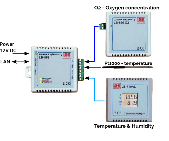 Continuous Room Microclimate Monitoring with an LB-856 Recorder